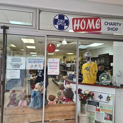 Charity starts at home: Help our pets