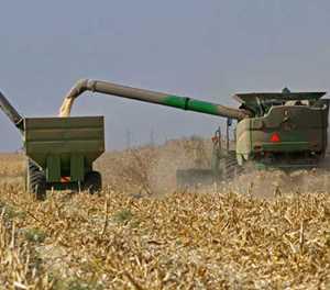 SA enters recession on back of agri output slump