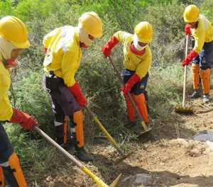 Firebreaks are compulsory by law