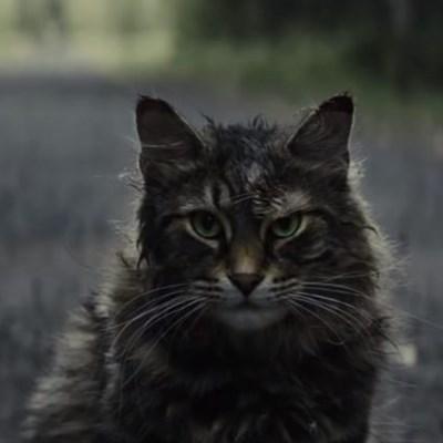 Trailer for Pet Sematary reboot drops