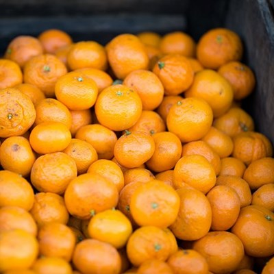 Citrus exports to US set for record, fueled by Covid-19
