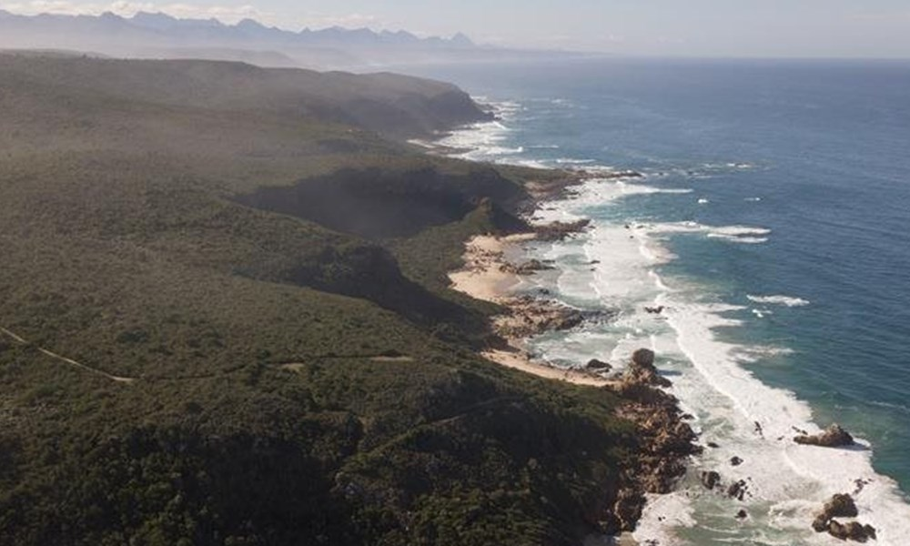 Plett nominated for Africa's leading beach destination