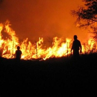 Warning: High veld fire risk