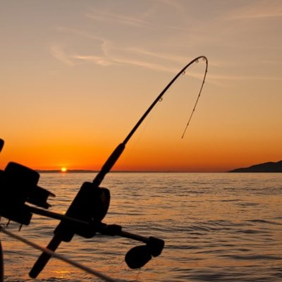 7 caught for illegally fishing during lockdown