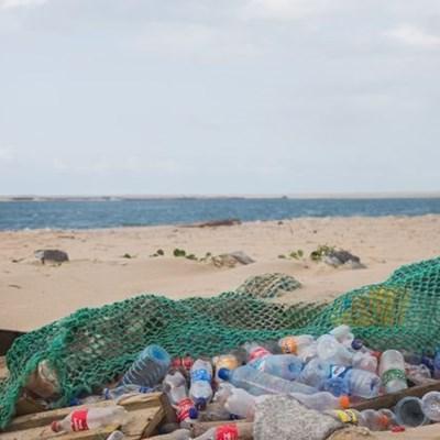 Beach clean-ups tomorrow