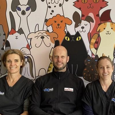 Experienced three-vet team at Vitalvet Animal Hospital