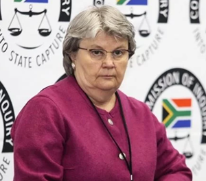 Zuma hung me out to dry, Hogan tells commission