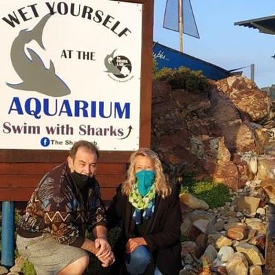 Help the Shark Lab keep head above water