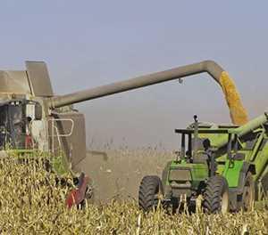 'Diesel now second highest input cost' – Grain SA