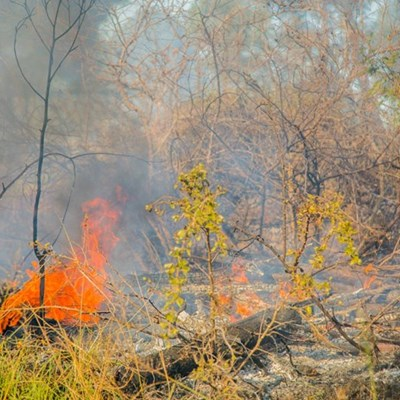 Fire season over, controlled burn allowed with restrictions