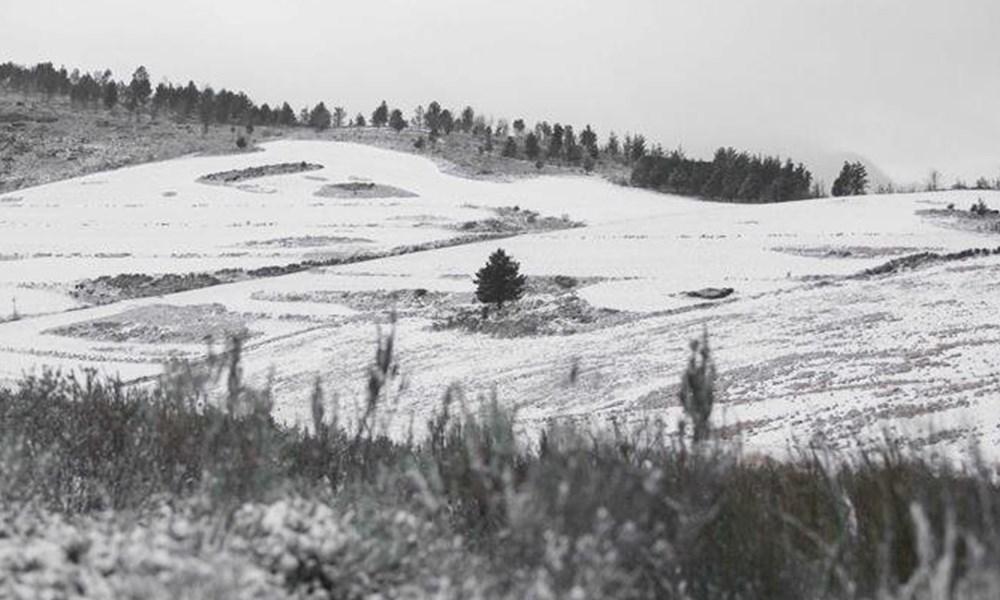 Freezing temperatures leave a pretty wonderland
