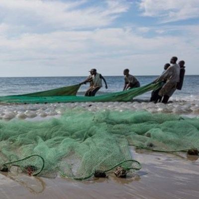 Fisheries sustainability top agenda at WTO meeting