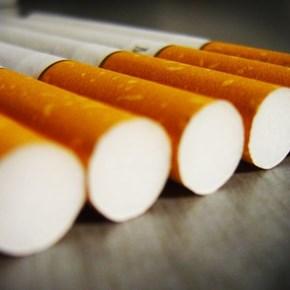 SARS destroys 2000 illicit cigarette boxes worth R17.4m