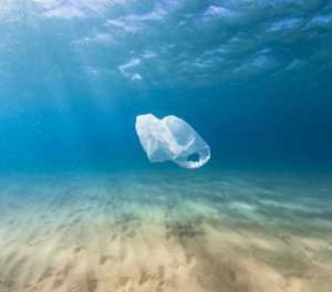 Banning plastic may not be the solution to pollution woes