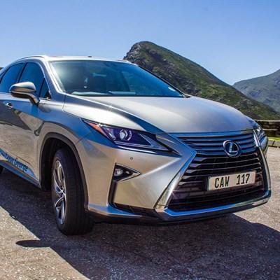 Lexus RX: X-factor deluxe