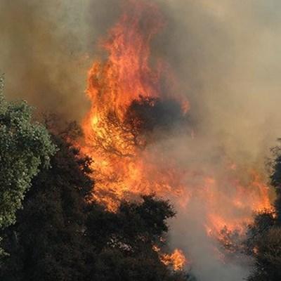 Wildfire: Raubenheimer Dam