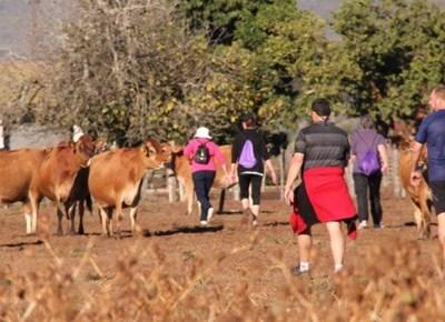 Kasselshoop Farm Run