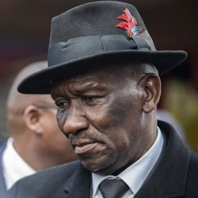 Find solutions to root causes of violent protests, urges Cele