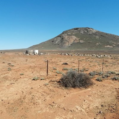 Western Cape to receive R25-million in drought support