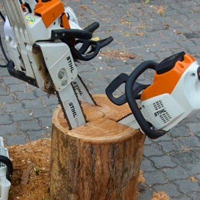 Knysna Timber Initiative saws ahead