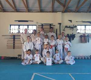 Karate gradings