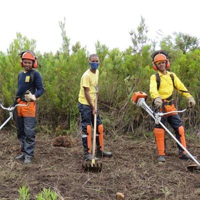 WOF Western Cape recruiting for fire season
