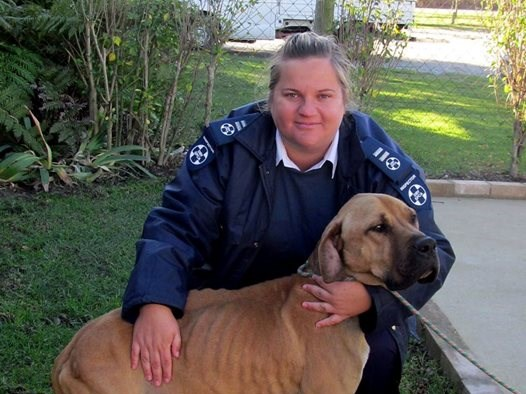 SPCA inspector warns against impersonator