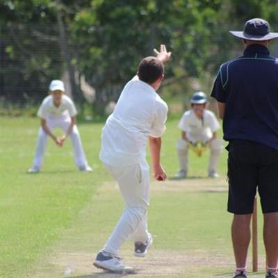 Cricket festivals leave Knysna stumped