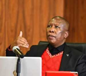 I want to retire from politics at the age of 55 – Malema