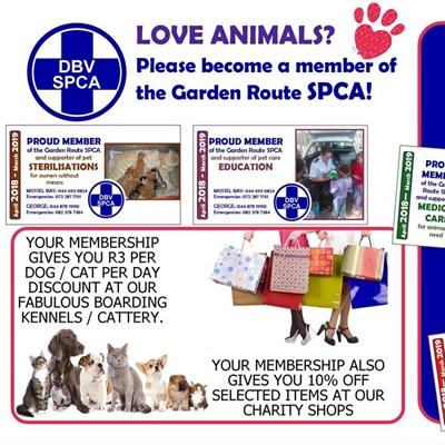 Please renew your SPCA membership