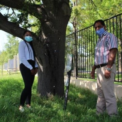 Borer beetle-busting research on wine estate hopes to curb further invasions