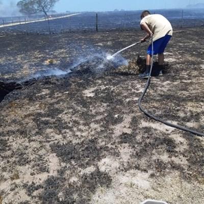 Groot skade op plaas na brand