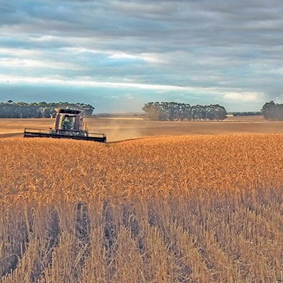 How agricultural economics keeps up with the times