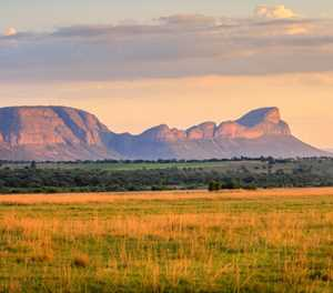 Our top 5 safari spots in South Africa