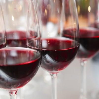 Festival of Wines next week
