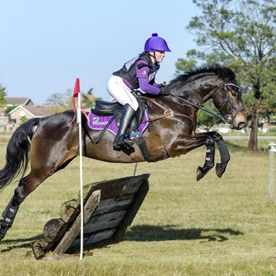 More than meets the eye at horse shows