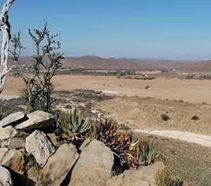 Droogtehulp vir Ladismith in die Klein-Karoo