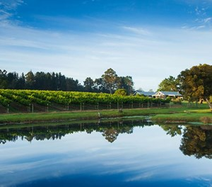 Wine estates bring fame to the Garden Route