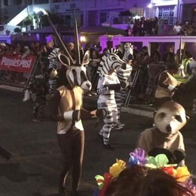 Khumba actors at Cape Town Carnival