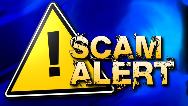 Scam alert: Don't take a page from this book | George Herald