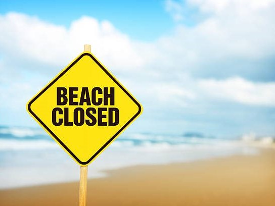 Shark activity: Beaches closed