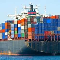 SA needs stricter safety policies for imported food products