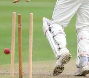 Pacaltsdorp cricket team heading for SWD semi-finals