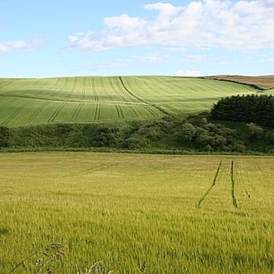 SA's biggest land reform mistake