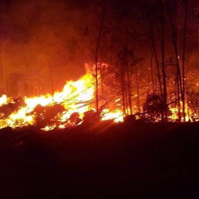 Crags firefighters battle Tsitsikamma blaze