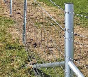 Fencing system wins gold at LAMMA 2020