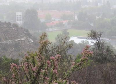 Rain for Graaff-Reinet