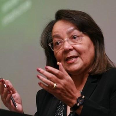 De Lille updates Parliament on land reform progress
