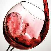 Virus booze ban causes headache for S.African winemakers