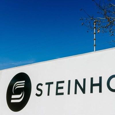 DA wants probe into Deloittes over Steinhoff role